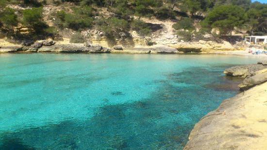 Playa del Mago, Portals Vells