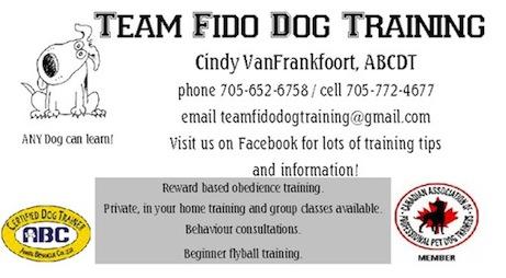 Team Fido Dog Training.jpg