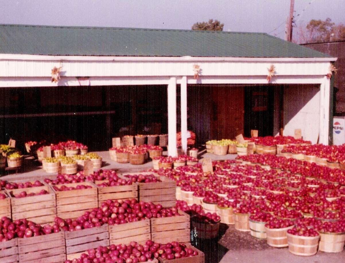 Apple Season at Bob's Farm Stand on Torrence, late 1970s