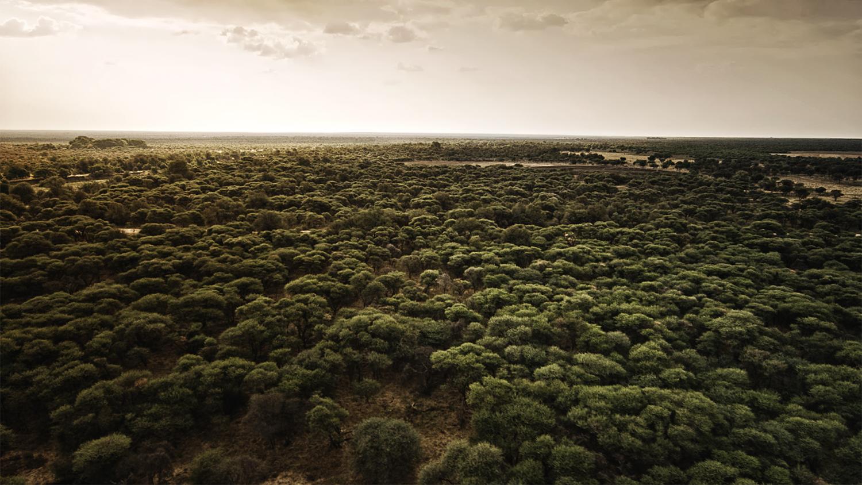 View Our Landscape Portfolio