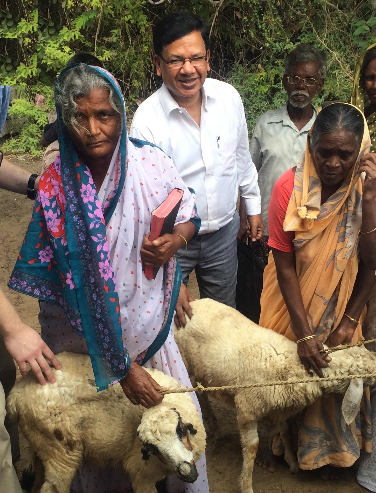 ___Benevolence widows and goats 2014.jpg