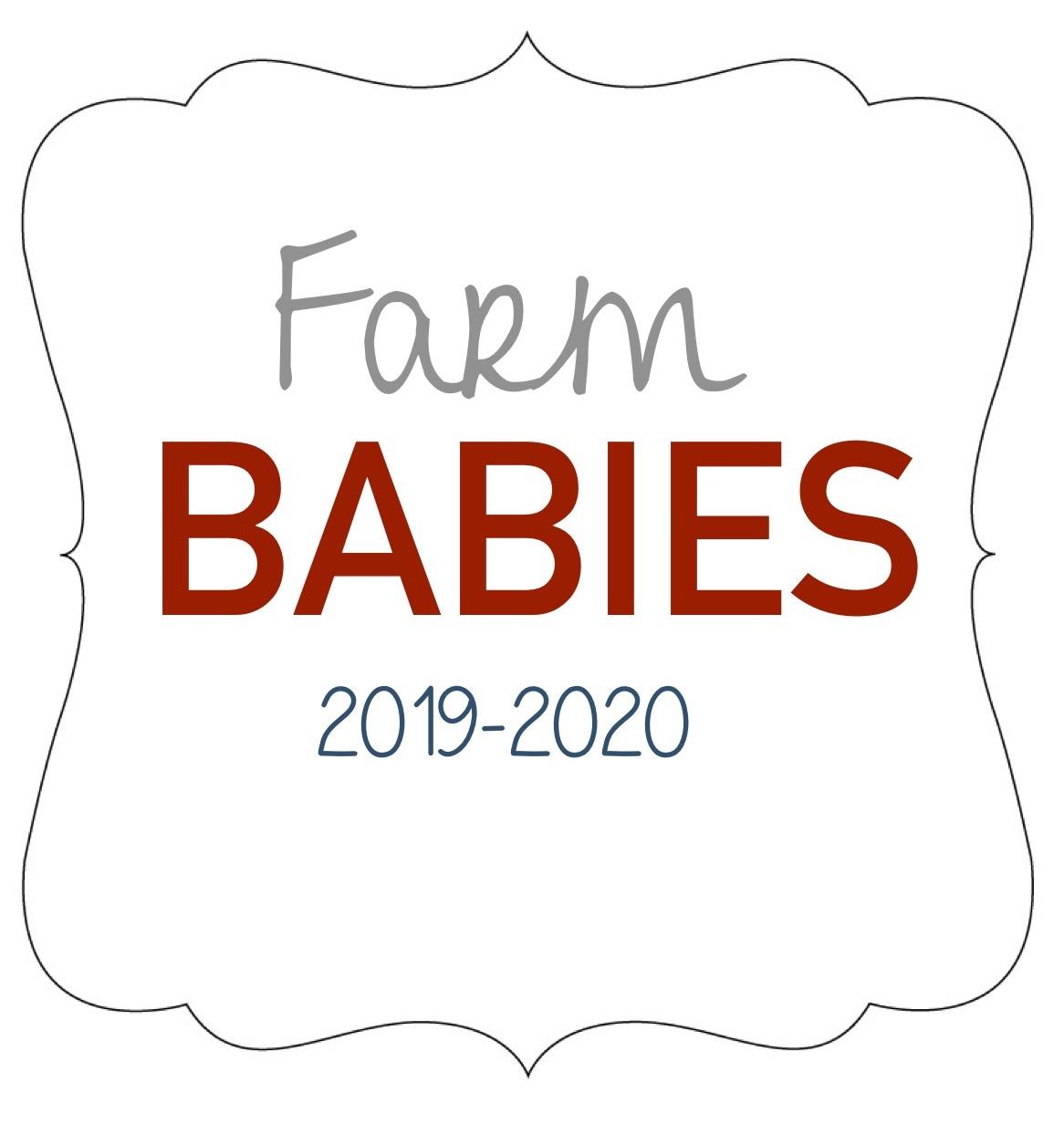 Farm Babies.jpg
