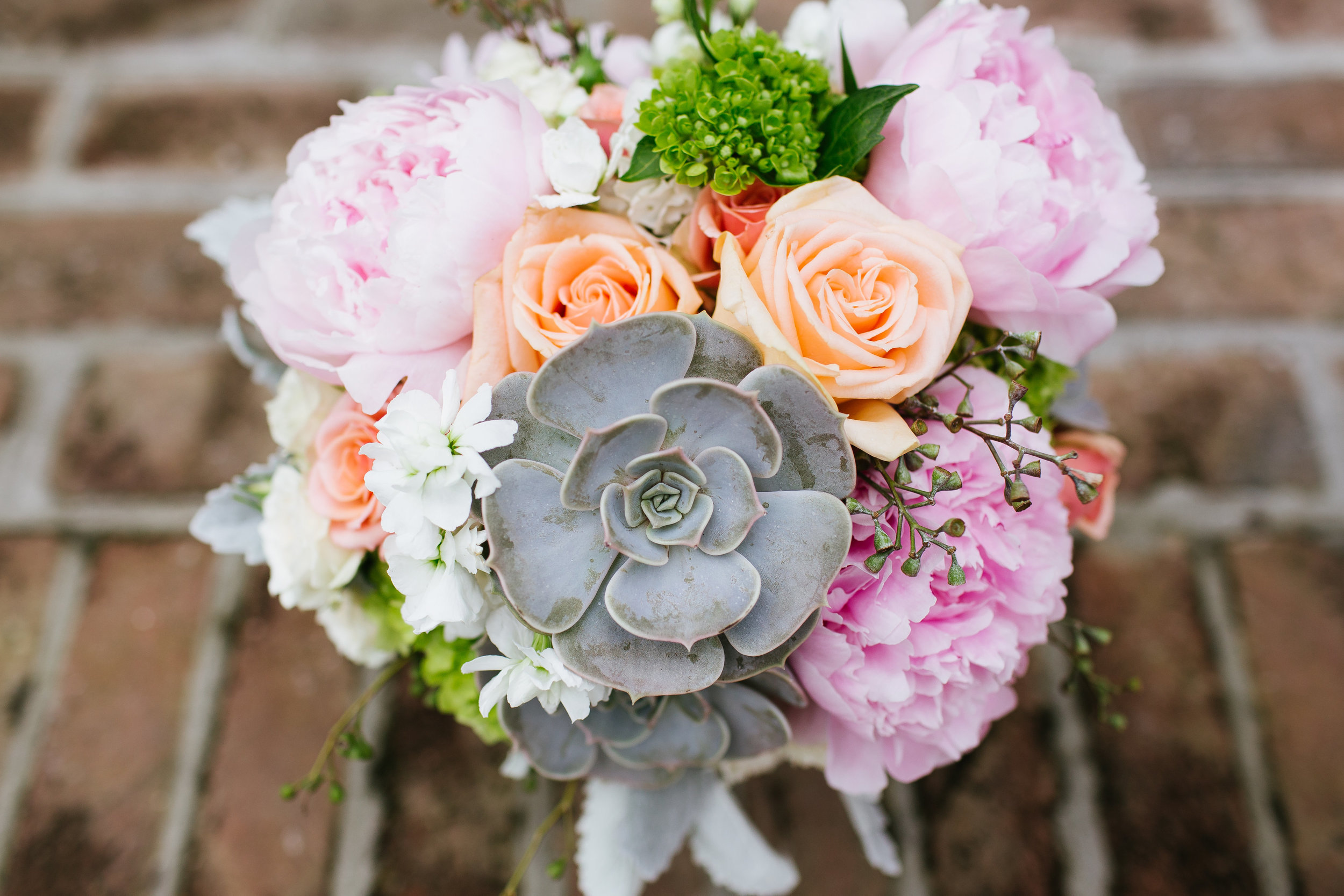 destination-wedding-photographer-charleston-sc