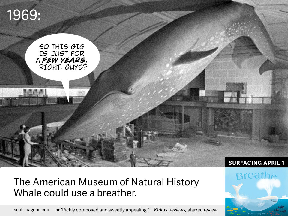 WHALES_BREATHER_MUSEUMWHALE.jpg