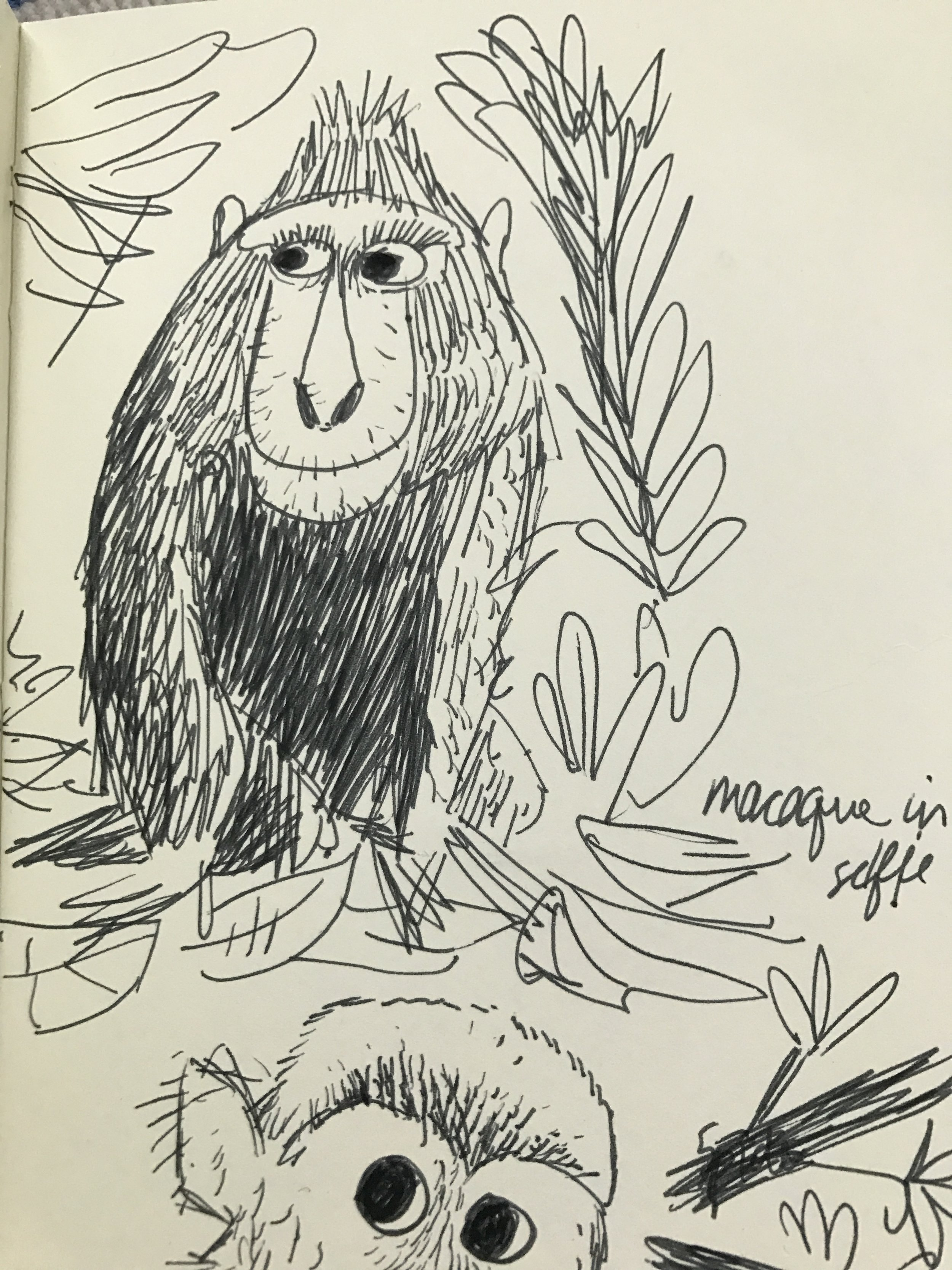 Another early monkey sketch; eventually final monkey concept is based on a Japanese  Macaque .
