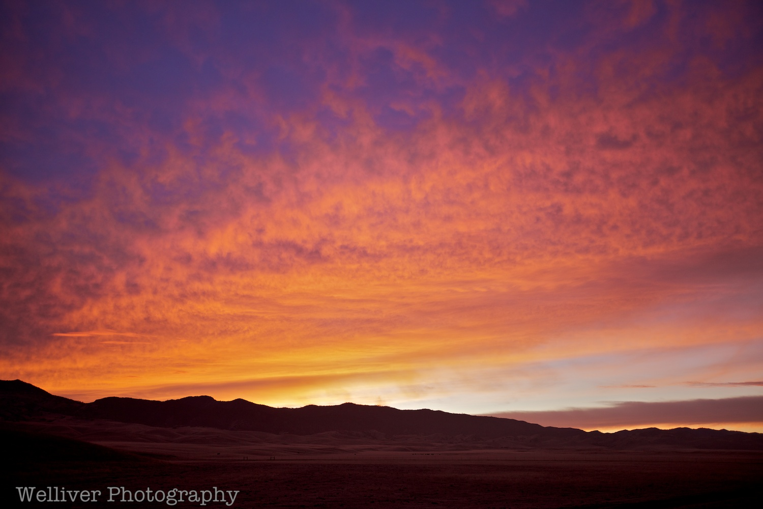 Panoche, CA: Brilliant Sunset by Terry.