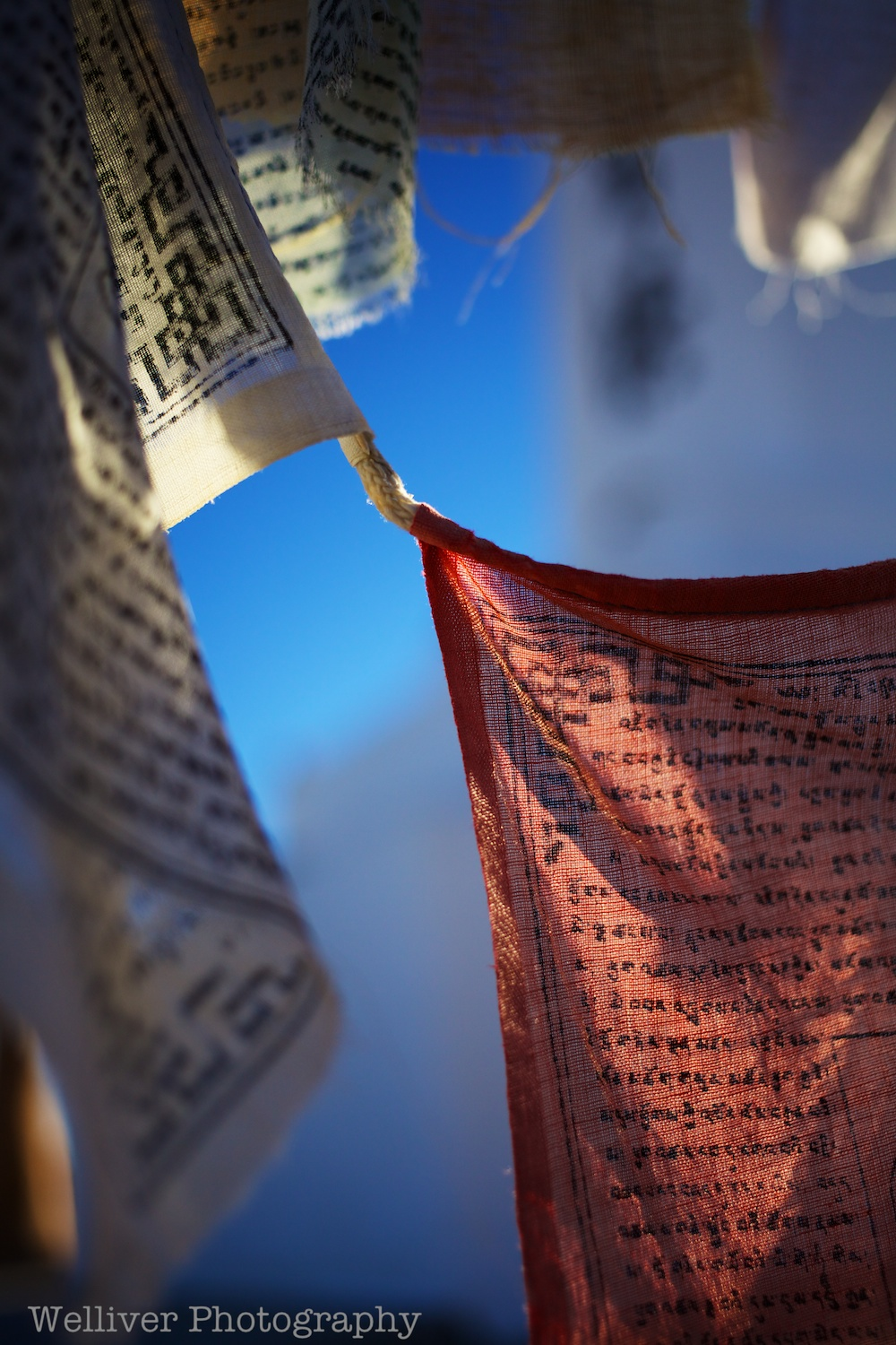 Manzanar National Historic Site : Prayer Flags by Terry.