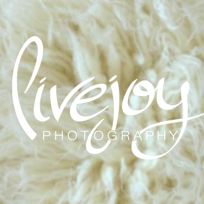 Branding : Livejoy Photography