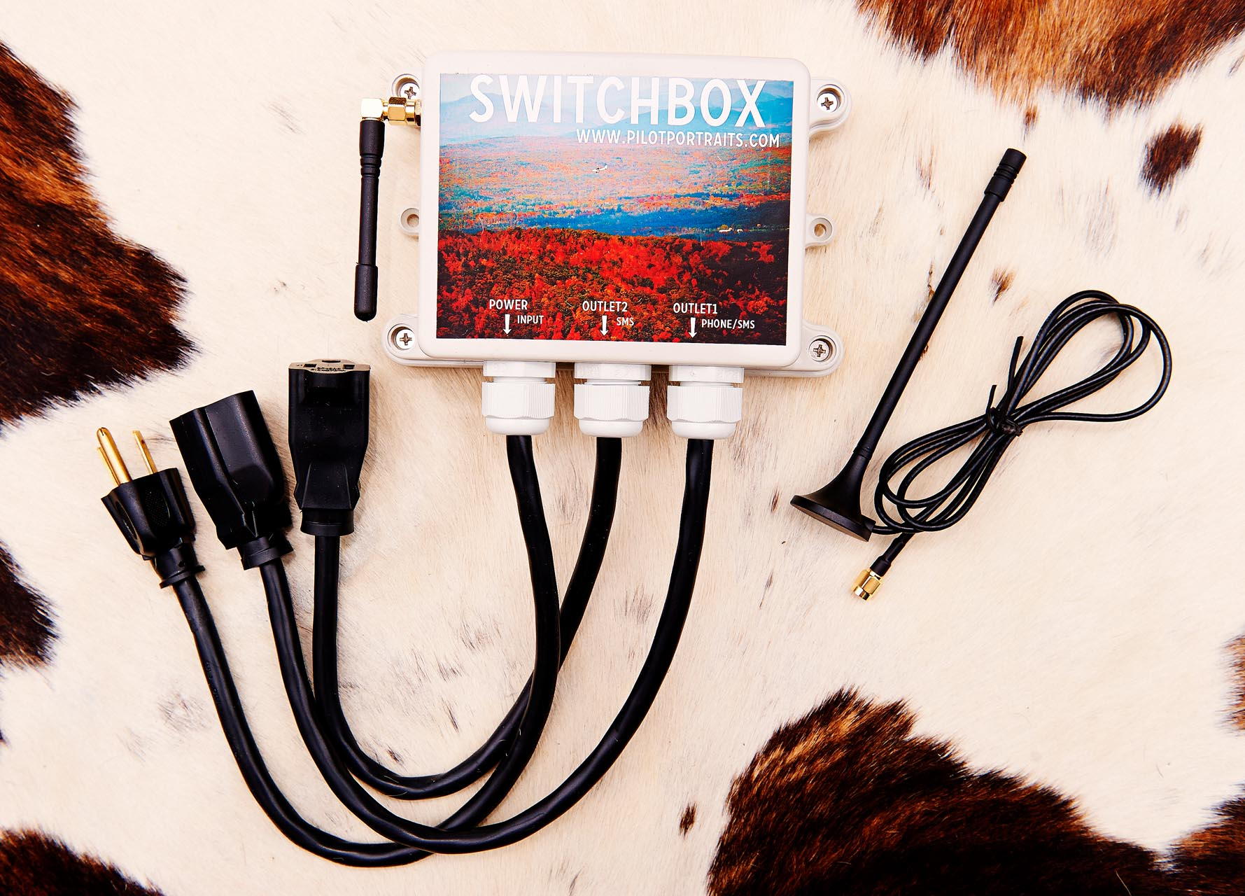 SwitchBox1118_1.jpg