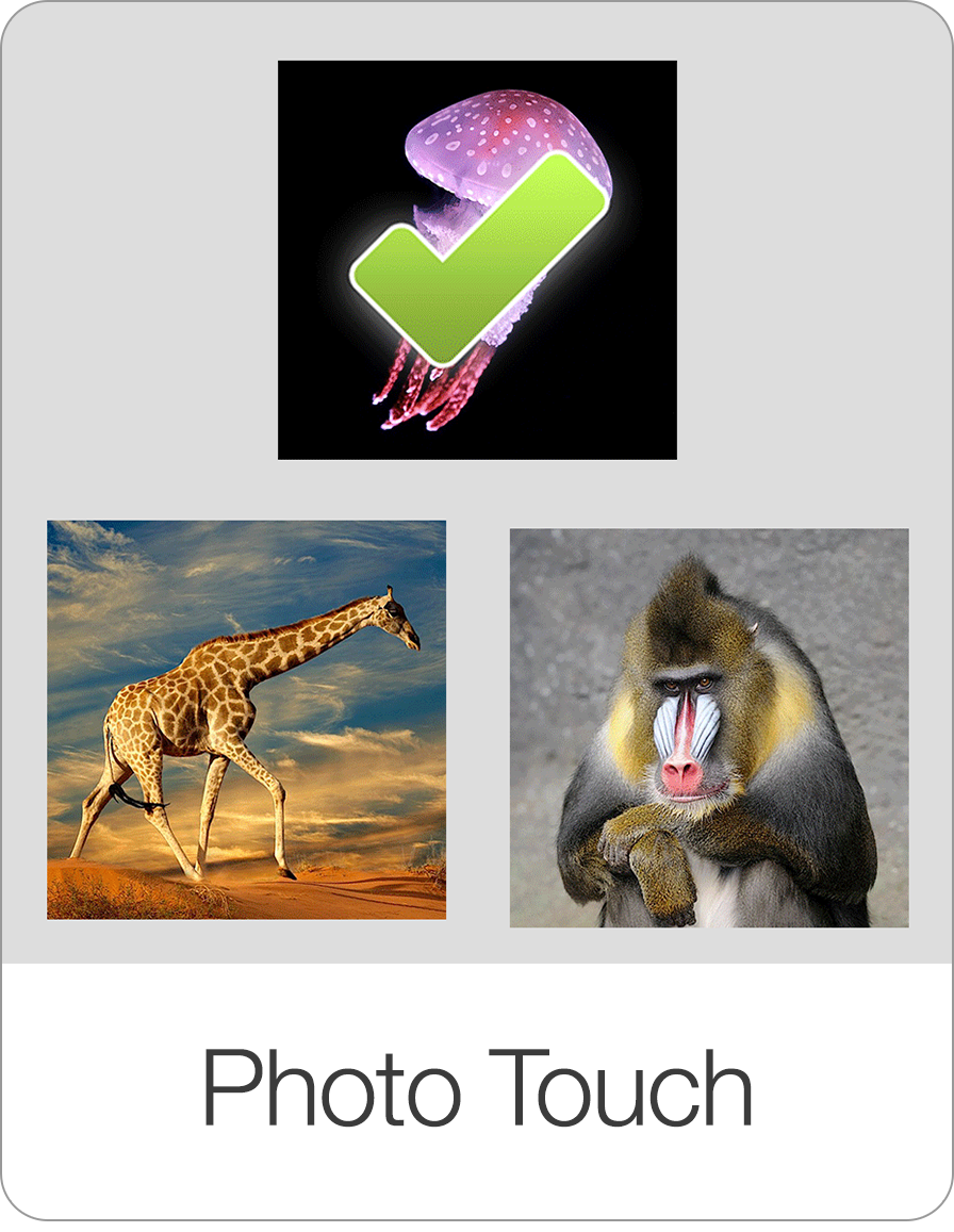 PhotoTouch.png