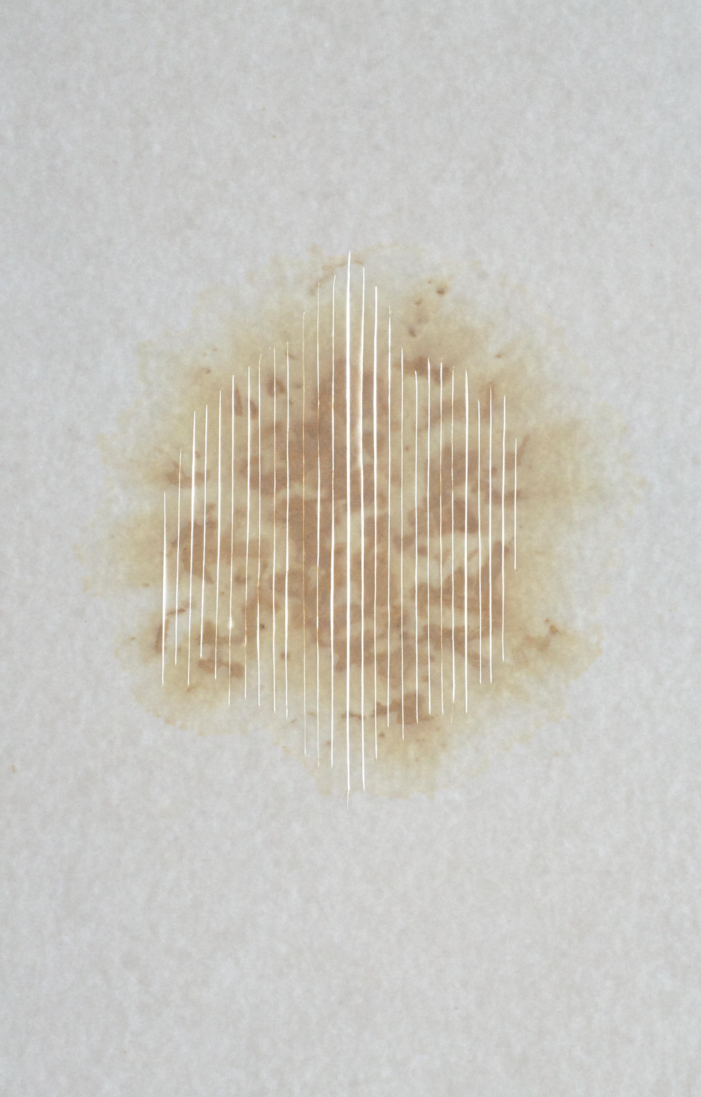 Light Mantra, 2015