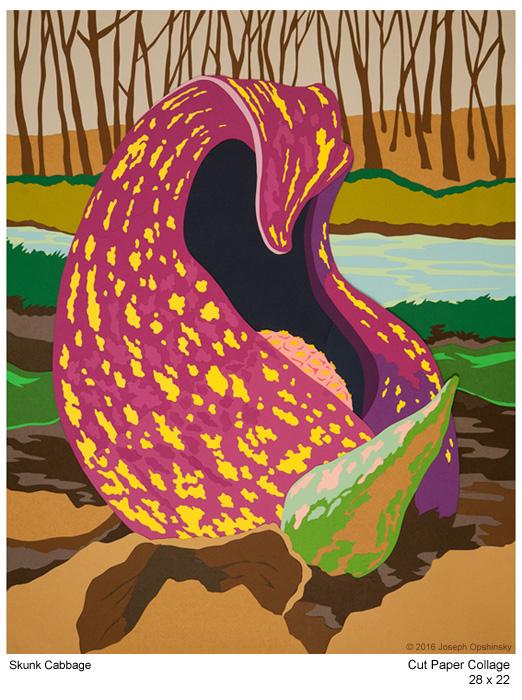 Skunk Cabbage (2016)