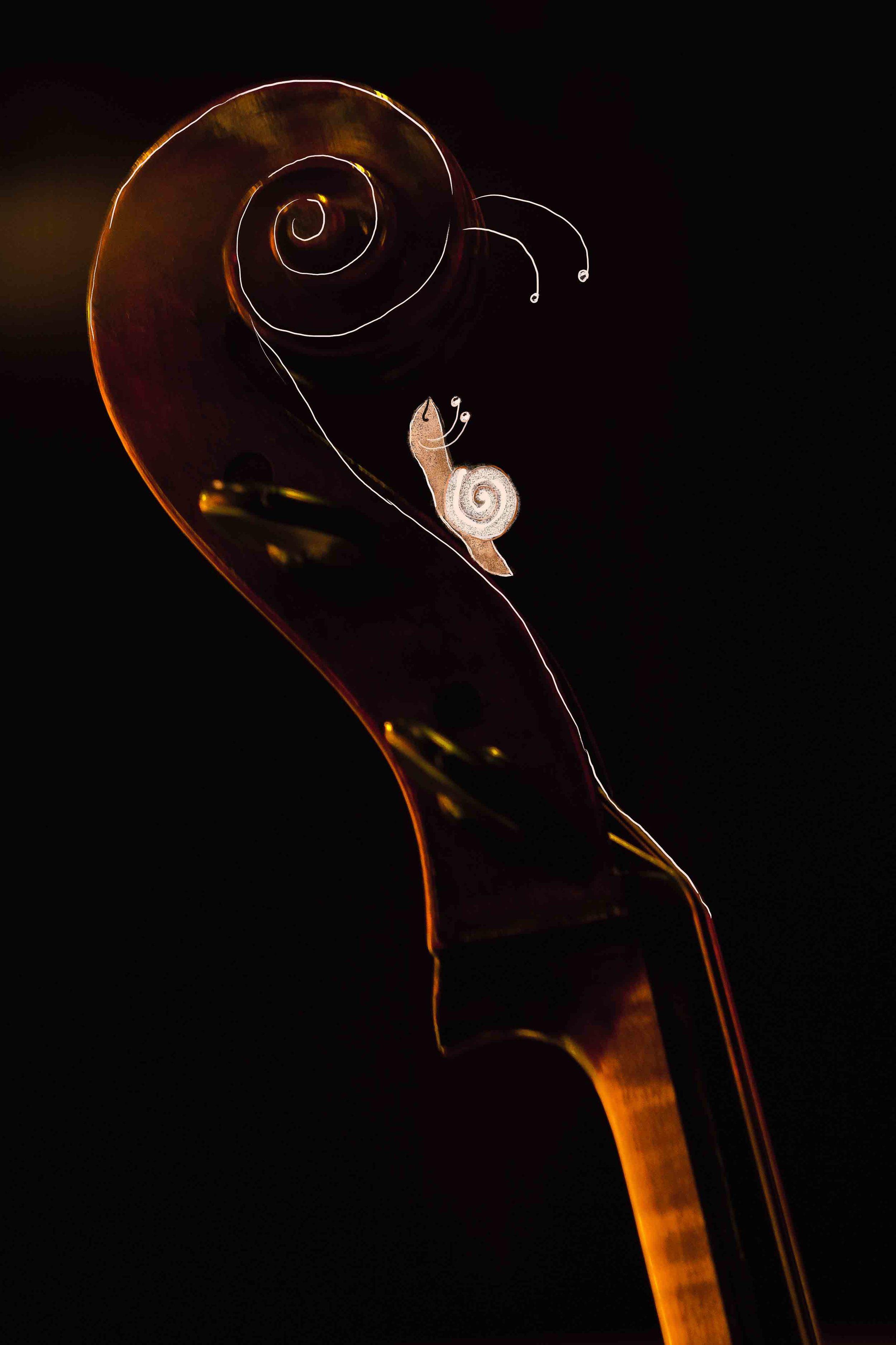 Cellobiennale 4.jpg