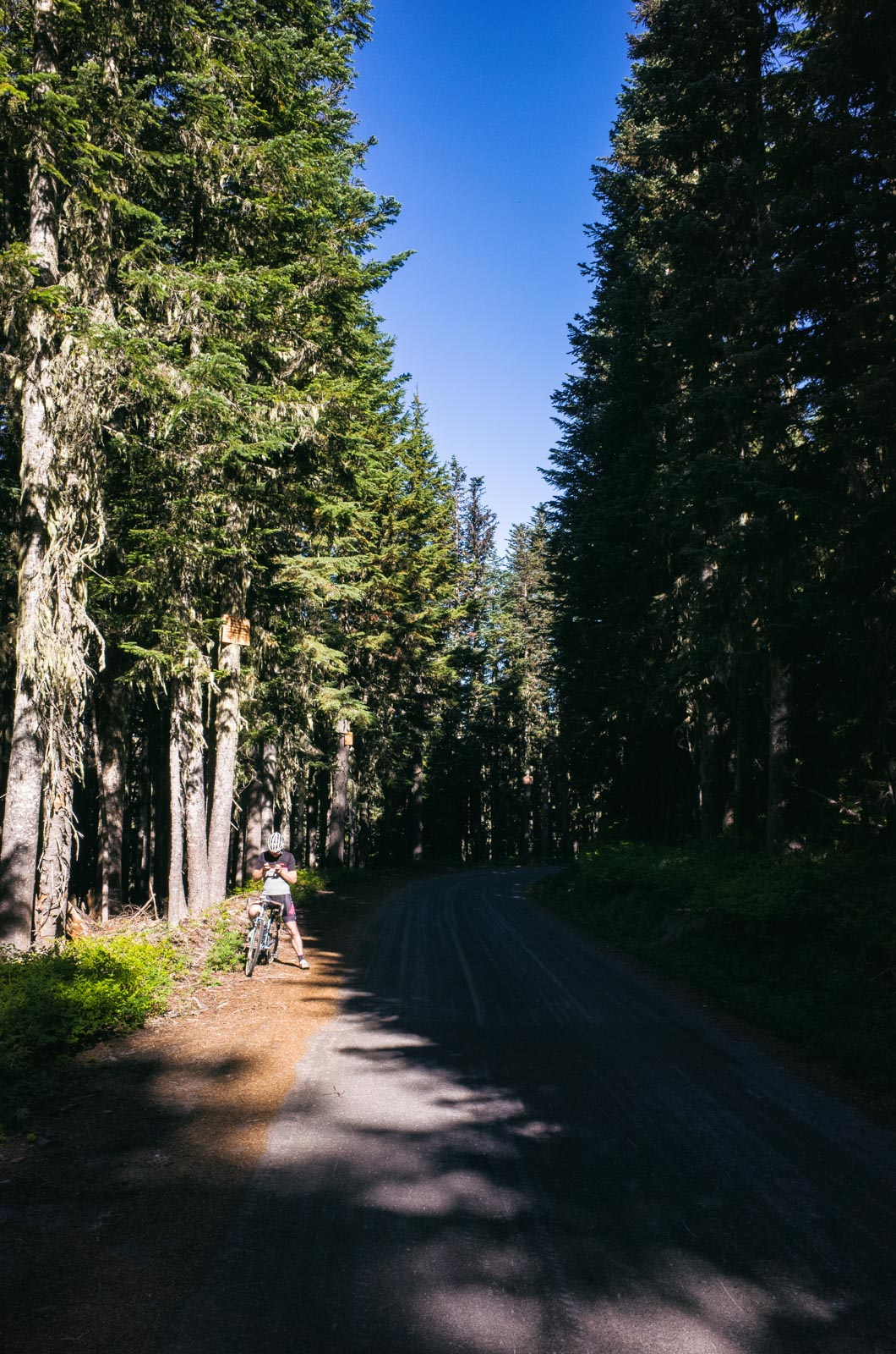 Mount Hood00011.jpg