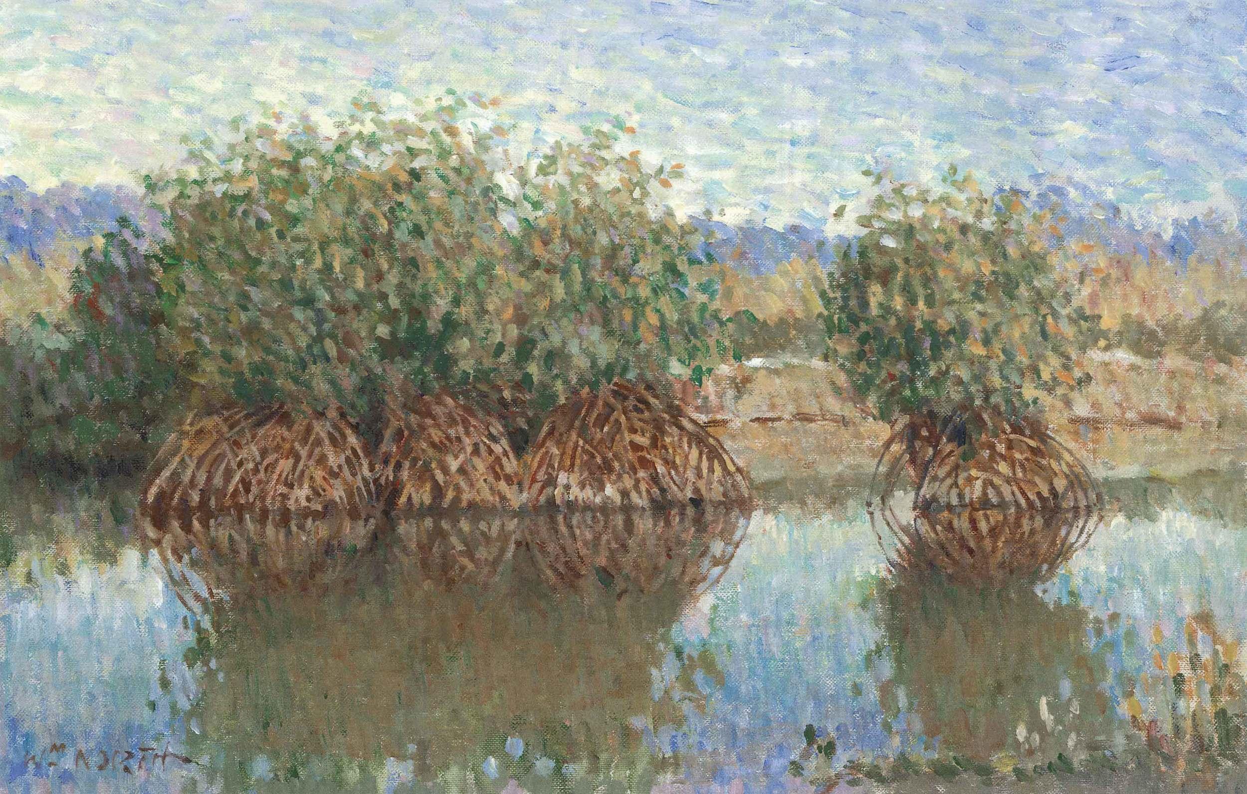 mangrove-island.jpg