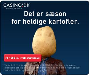 Vinterlandskab hos Casino.dk