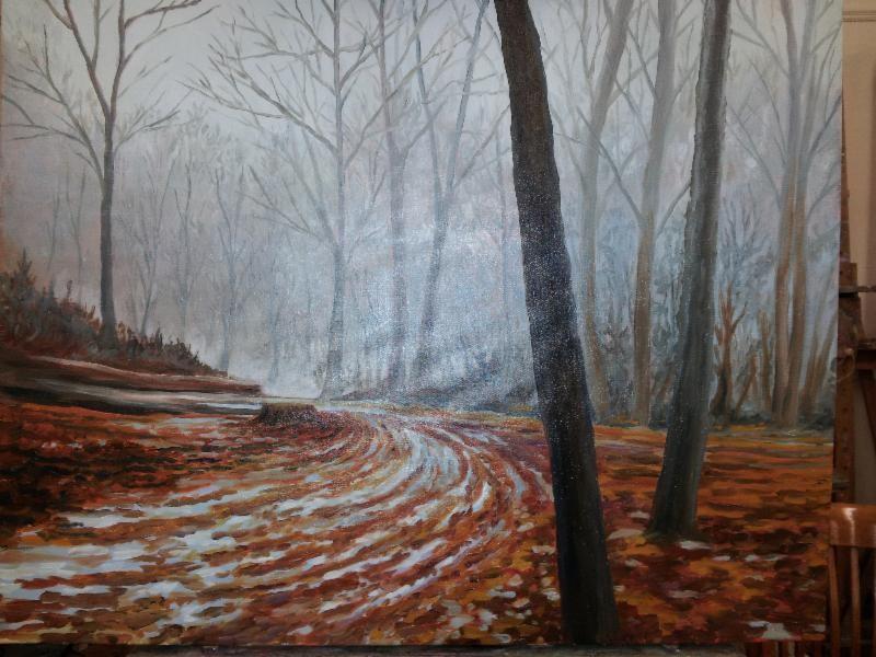 Case Mountain Trail by Brian Colbath