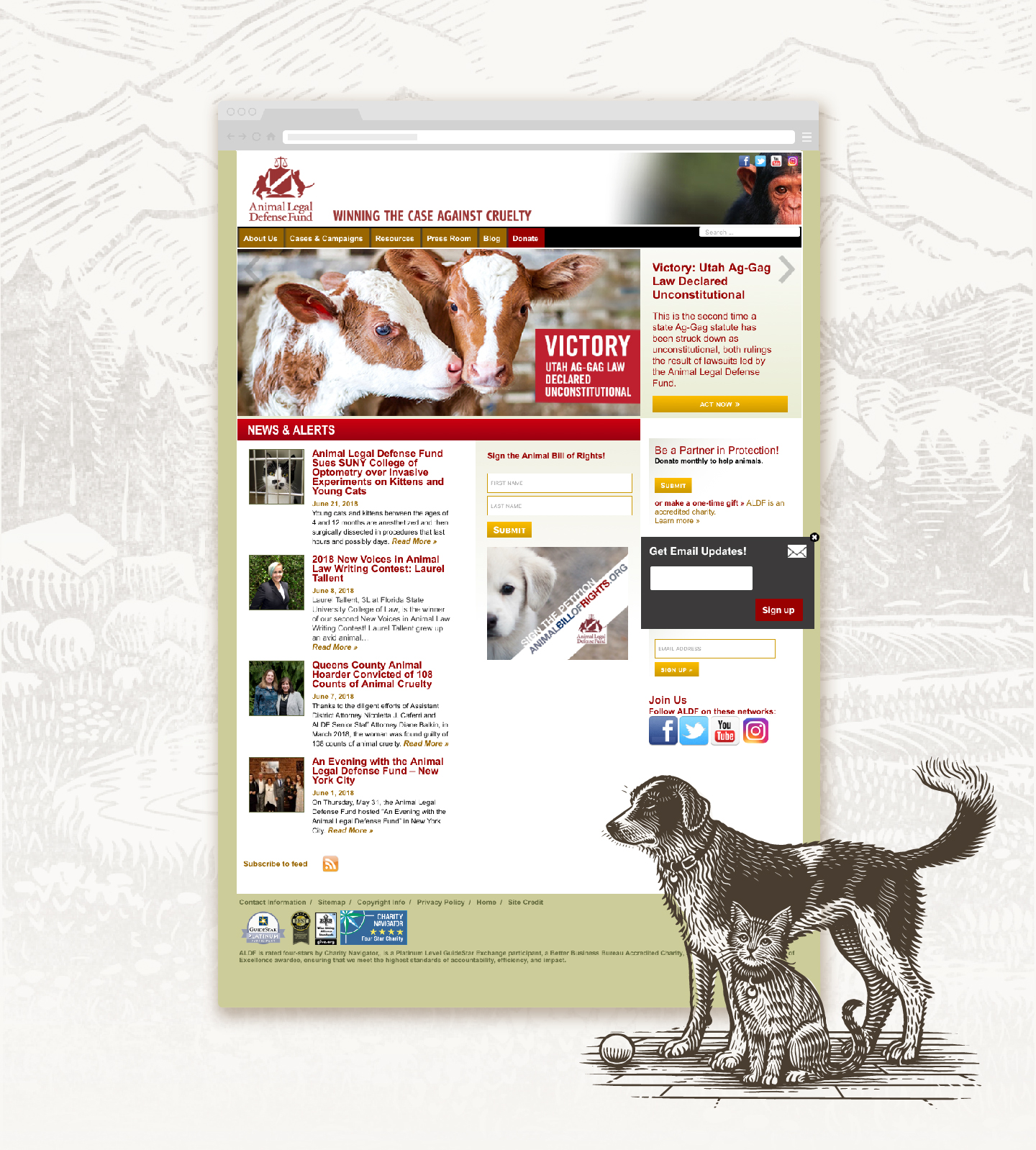 Original Site was cluttered and outdated. The ALDF team knew they needed a refresh and wanted to highlight the work they were doing in a professional but still passionate way.