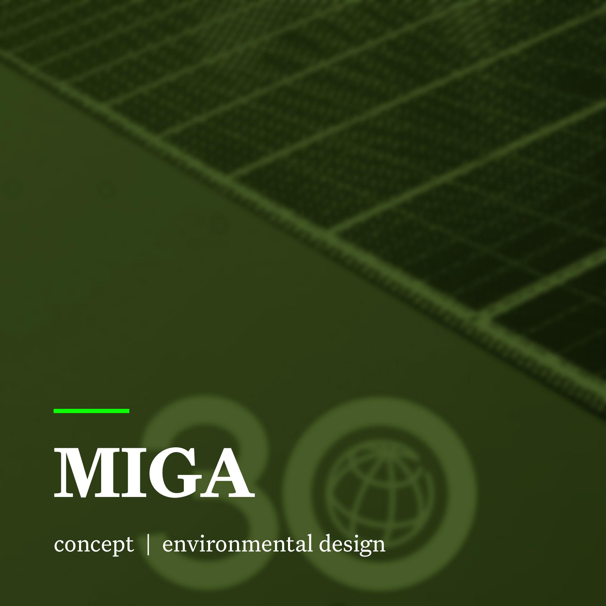 6-MIGA.jpg