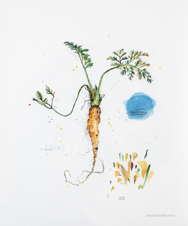 Carrot, watercolor on paper, 8 x 10 in., 2013.  Limited edition fine art prints are available at  Artstream .