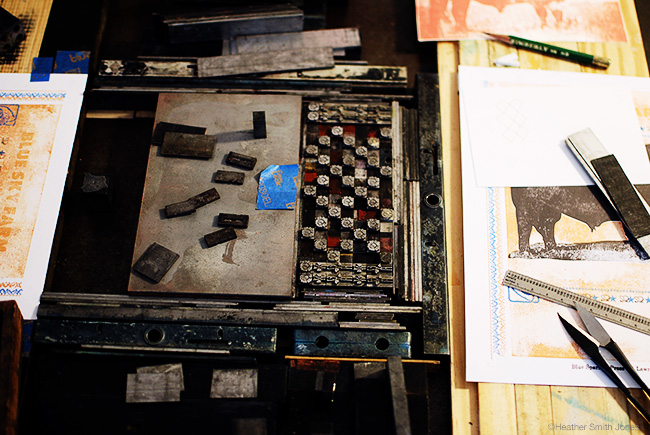 Typesetting for the cow print.