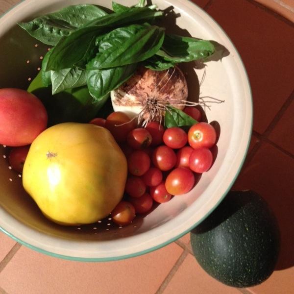 Dinner makings, from the garden.