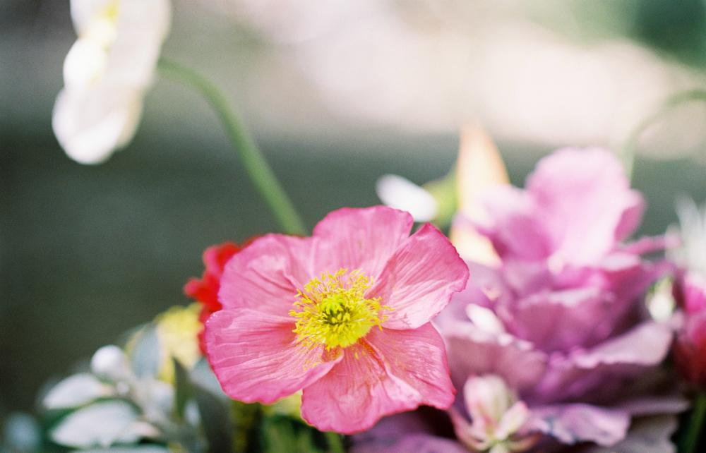 Enchanted Garden-1-38.jpg