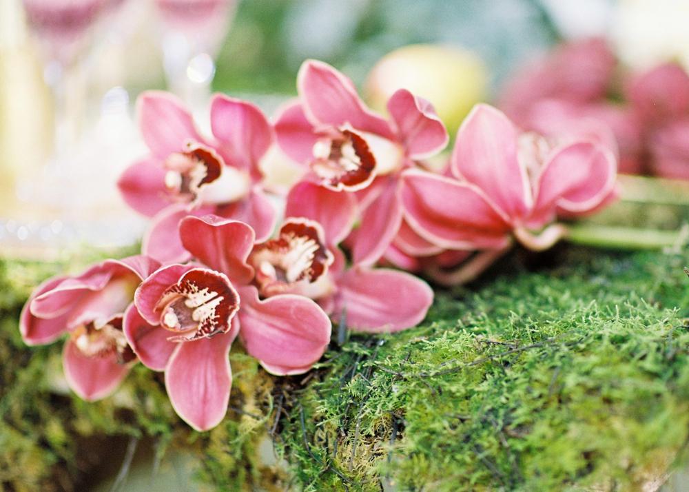 Enchanted Garden-1-64.jpg