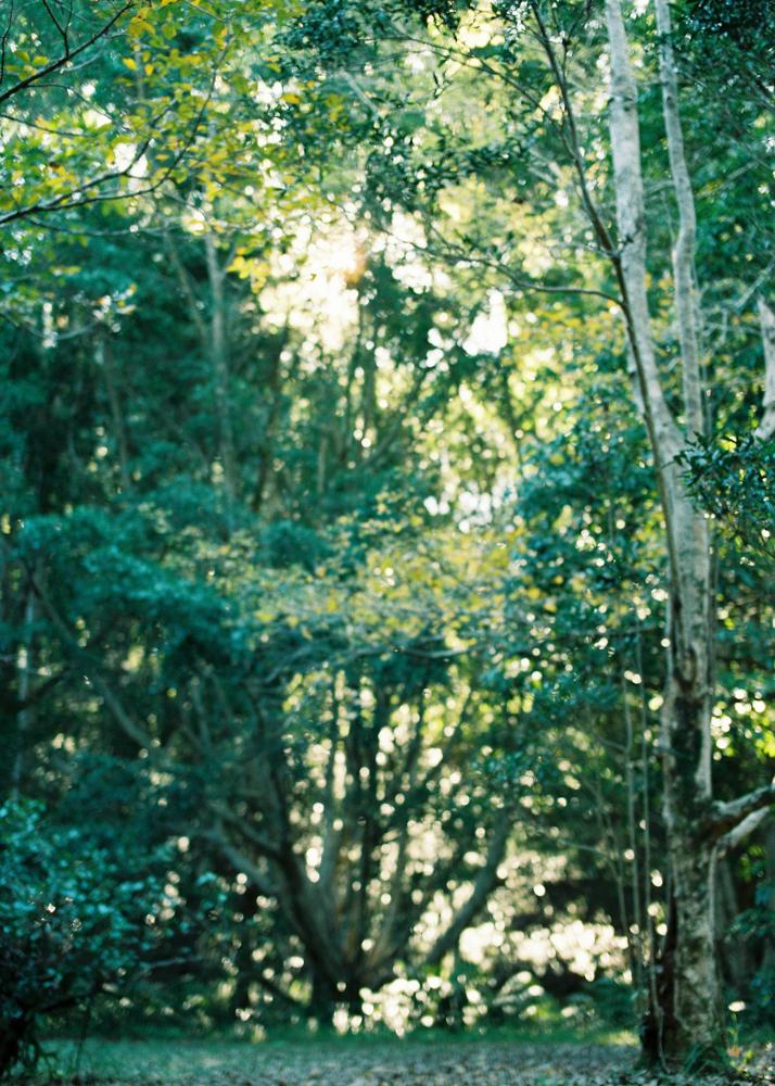 Enchanted Garden-2-6.jpg