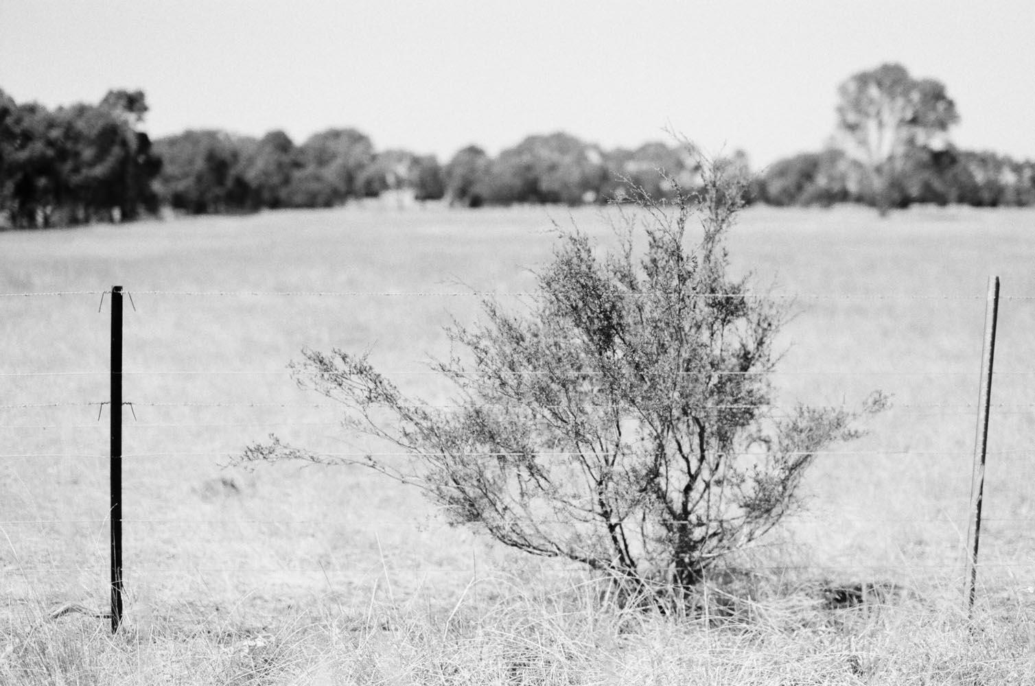 Josie Richardson Photography-11-2.jpg