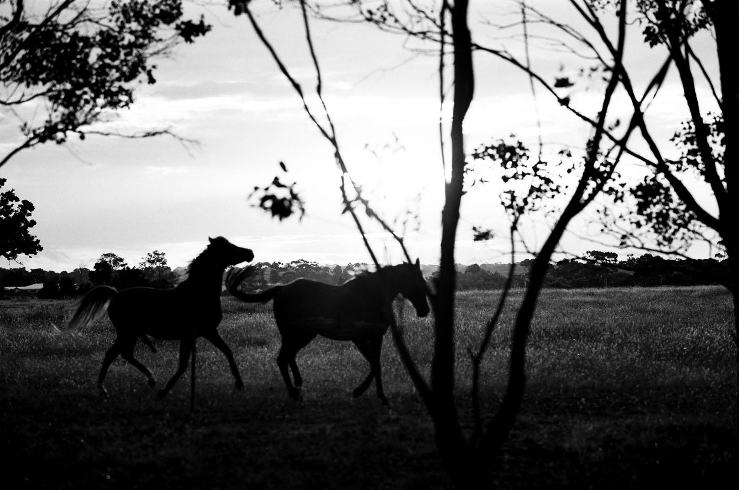 Josie Richardson Photography-1-2.jpg