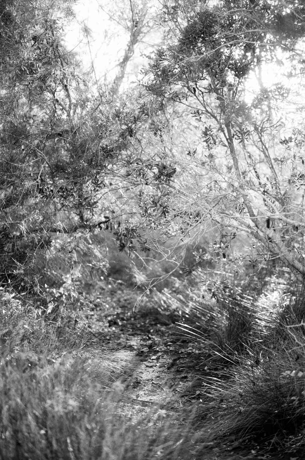 Josie Richardson Photography-24.jpg