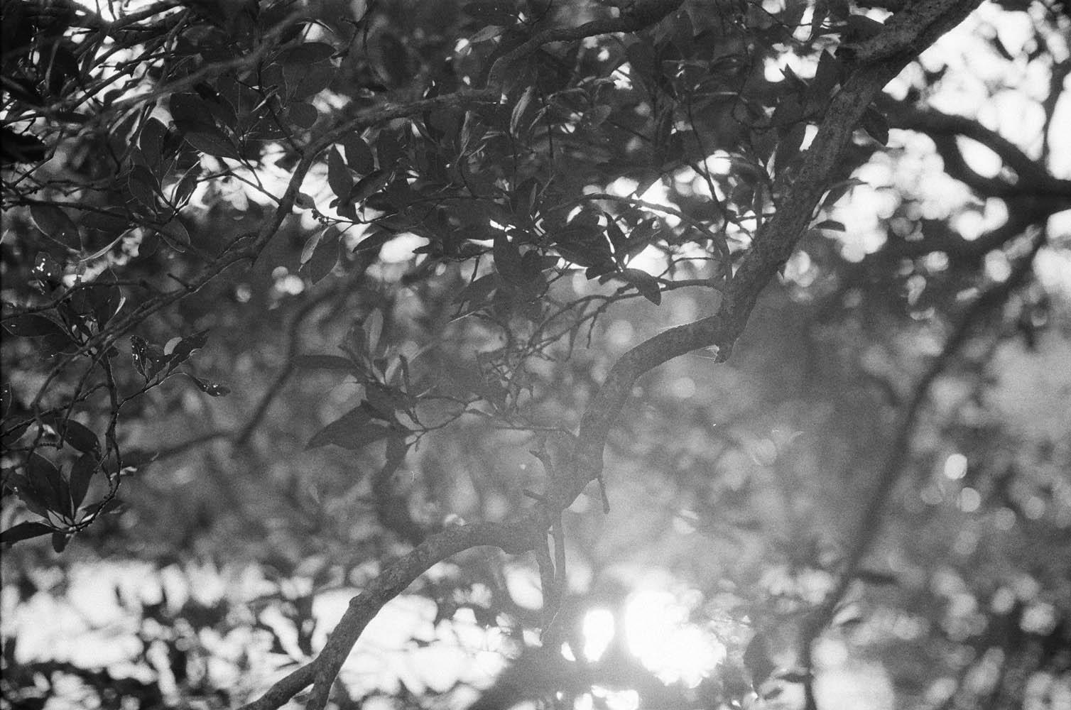 Josie Richardson Photography-25.jpg