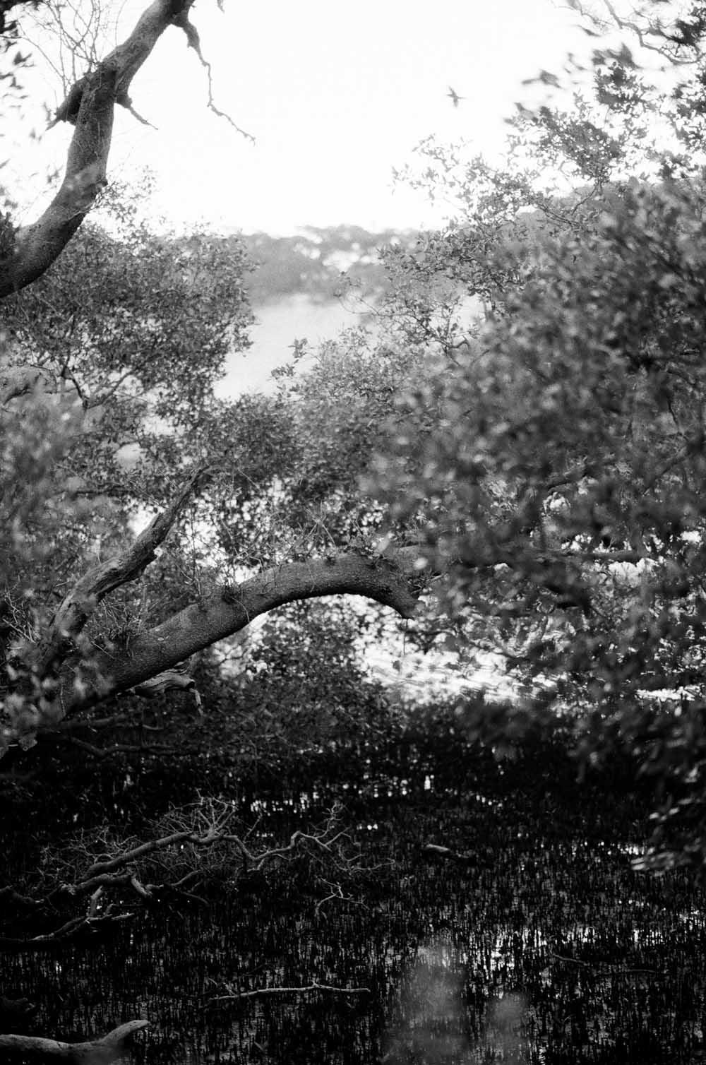 Josie Richardson Photography-44.jpg