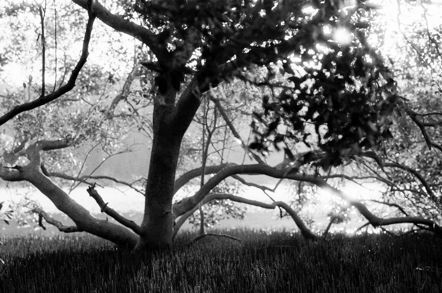 Josie Richardson Photography-1-4.jpg