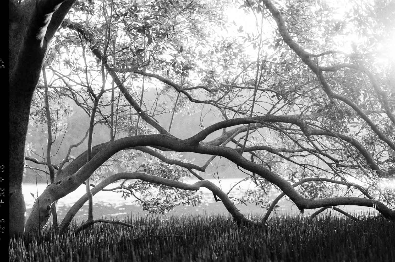 Josie Richardson Photography-2-4.jpg