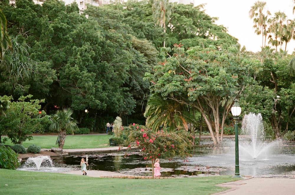 Brisbane Botanical Gardens-32.jpg