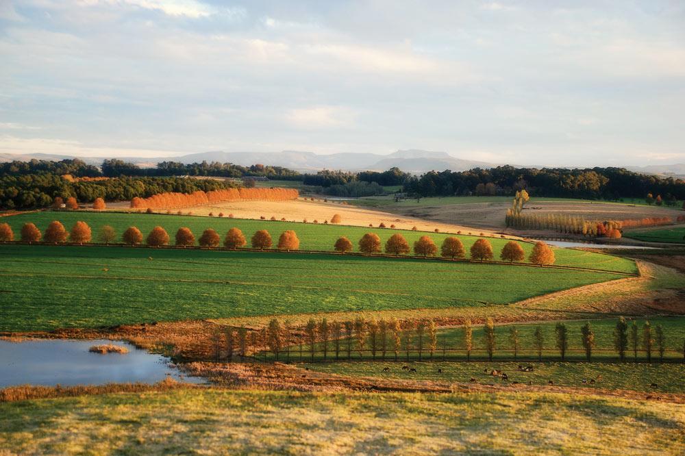 farm-lands.jpg