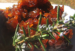 Barbeque Relish Photo : Jackie Cameron