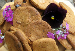 Chocolate and Lavender Biscuits  Photo : Jackie Cameron