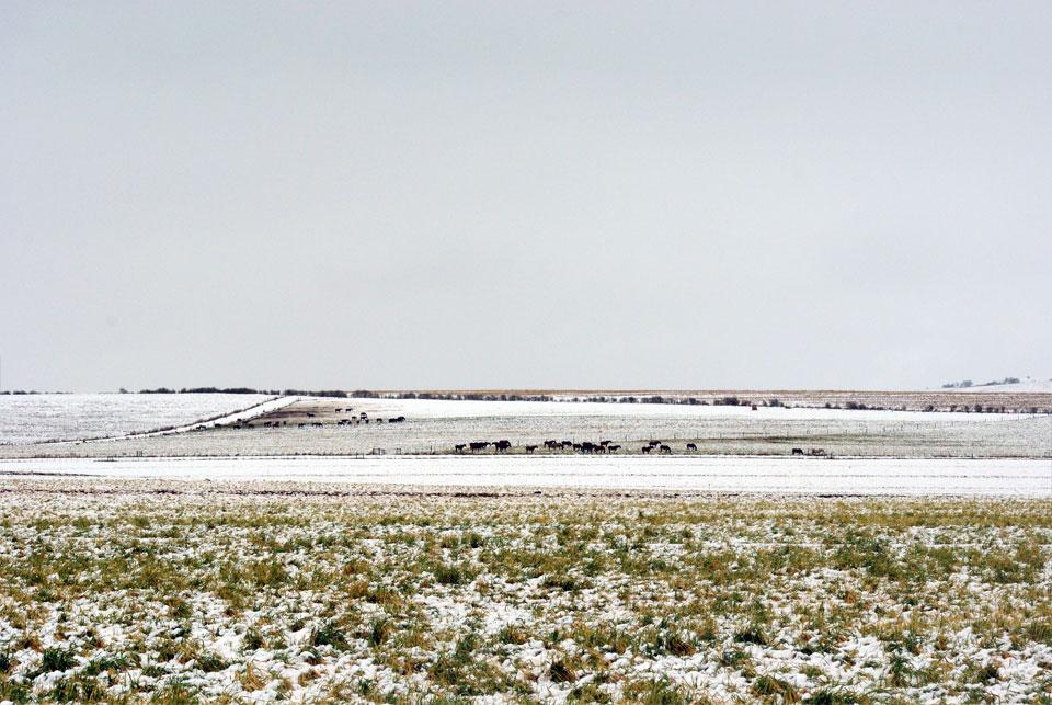 kwazulu-natal-snow-56.jpg