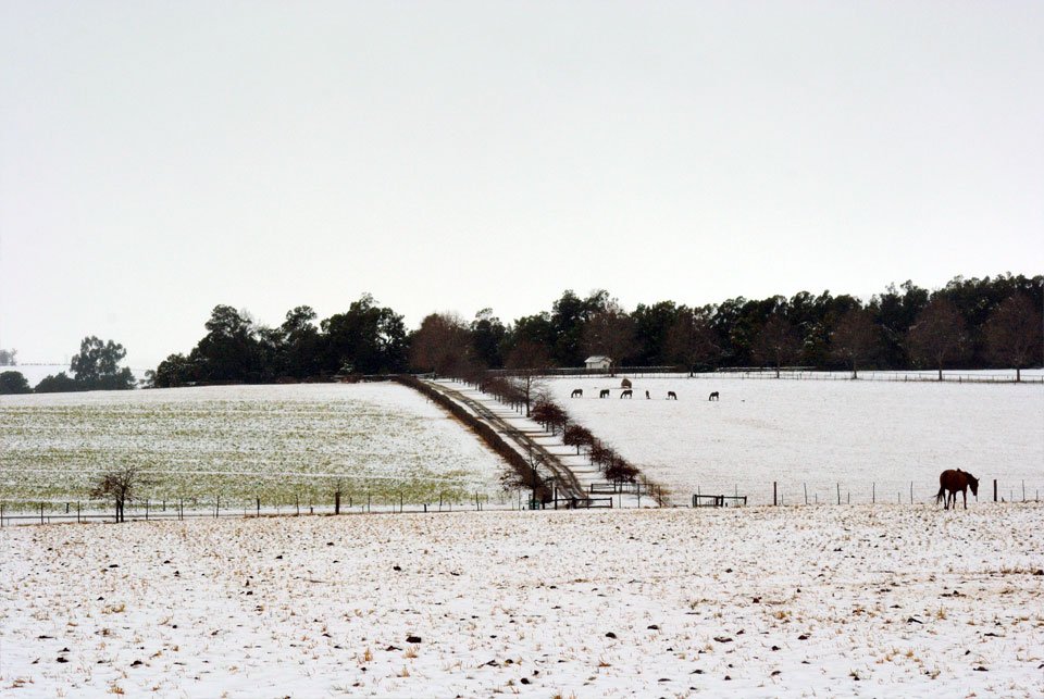 kwazulu-natal-snow-53.jpg