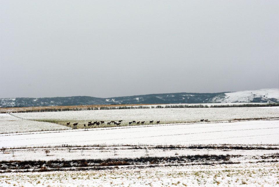 kwazulu-natal-snow-52.jpg