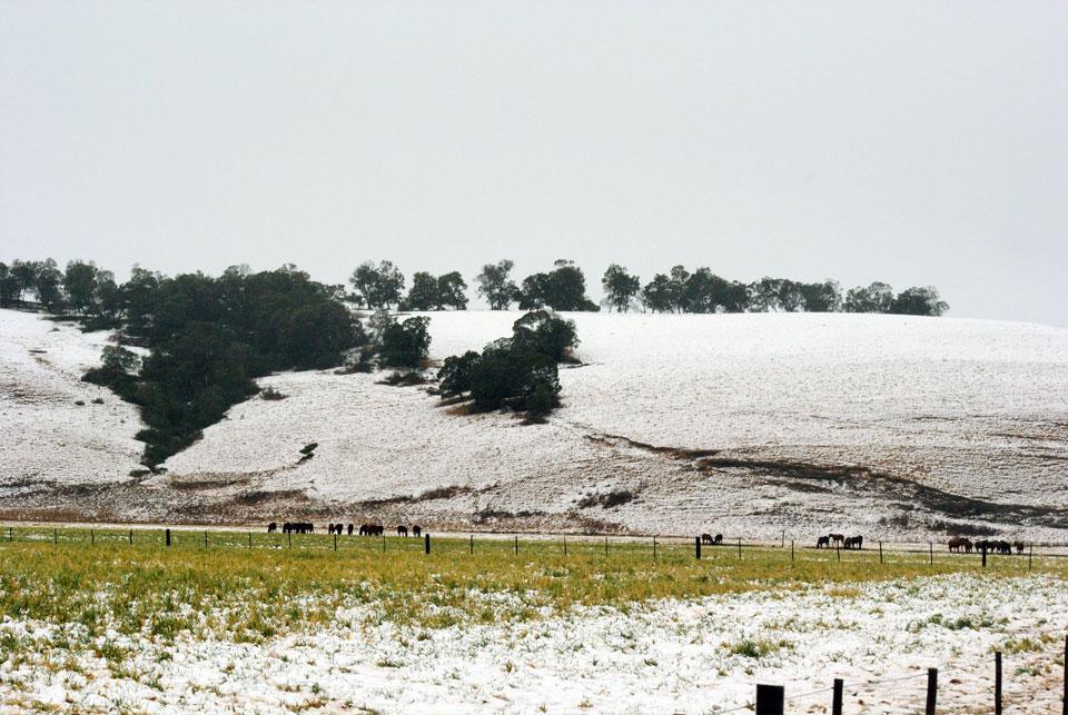 kwazulu-natal-snow-55.jpg