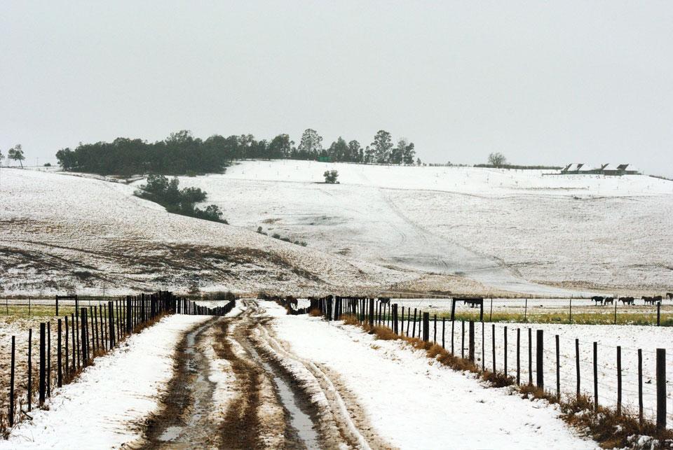 kwazulu-natal-snow-54.jpg