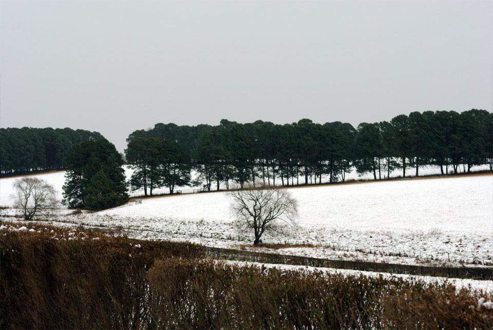 kwazulu-natal-snow-45.jpg