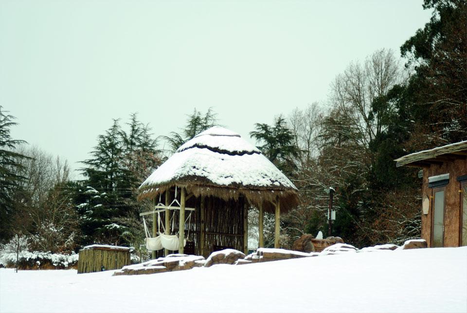 kwazulu-natal-snow-21.jpg