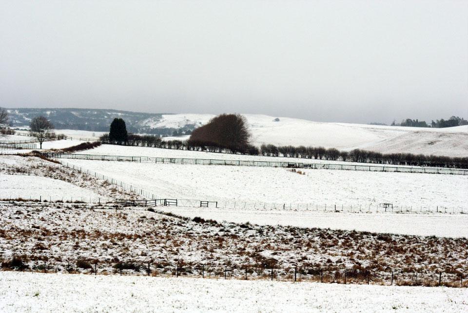 kwazulu-natal-snow-49.jpg