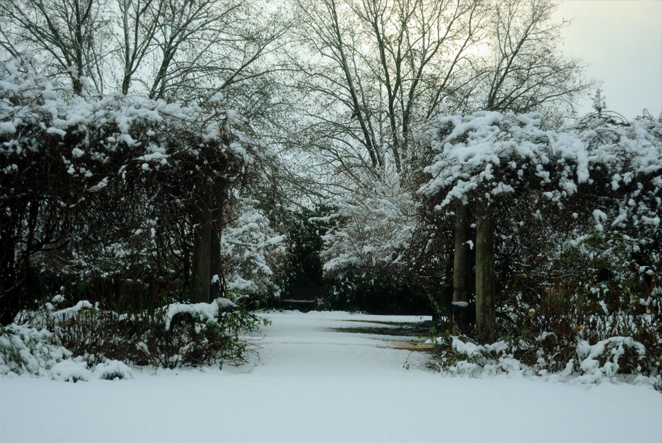 kwazulu-natal-snow-7.jpg