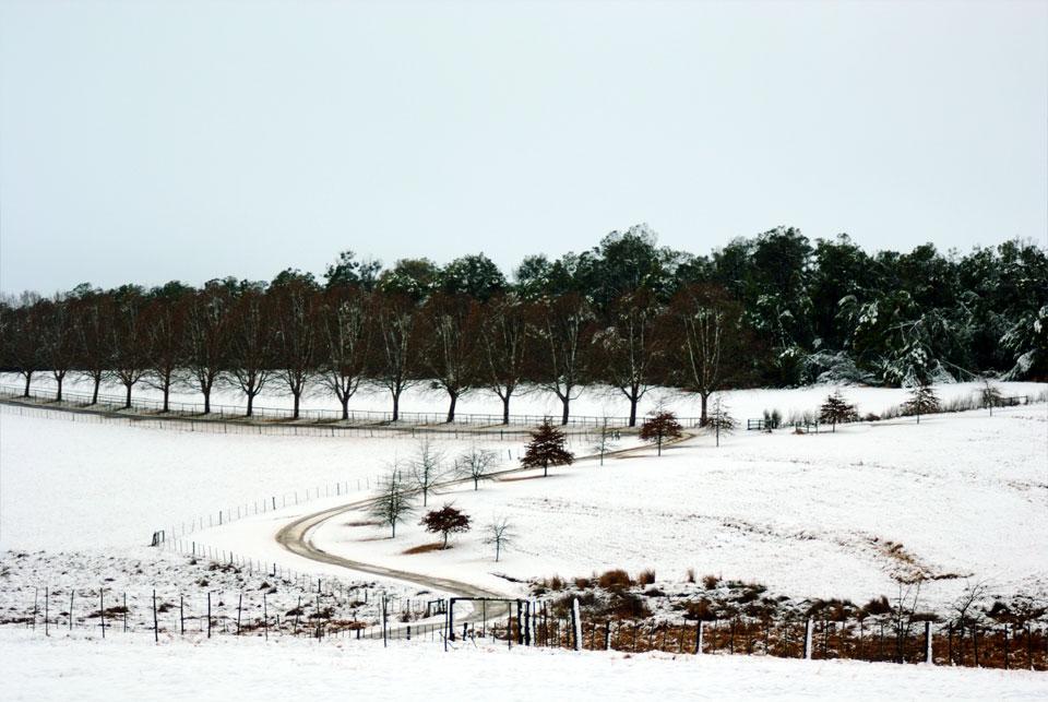 kwazulu-natal-snow-17.jpg